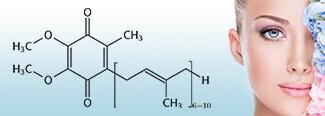 reijin coenzyme